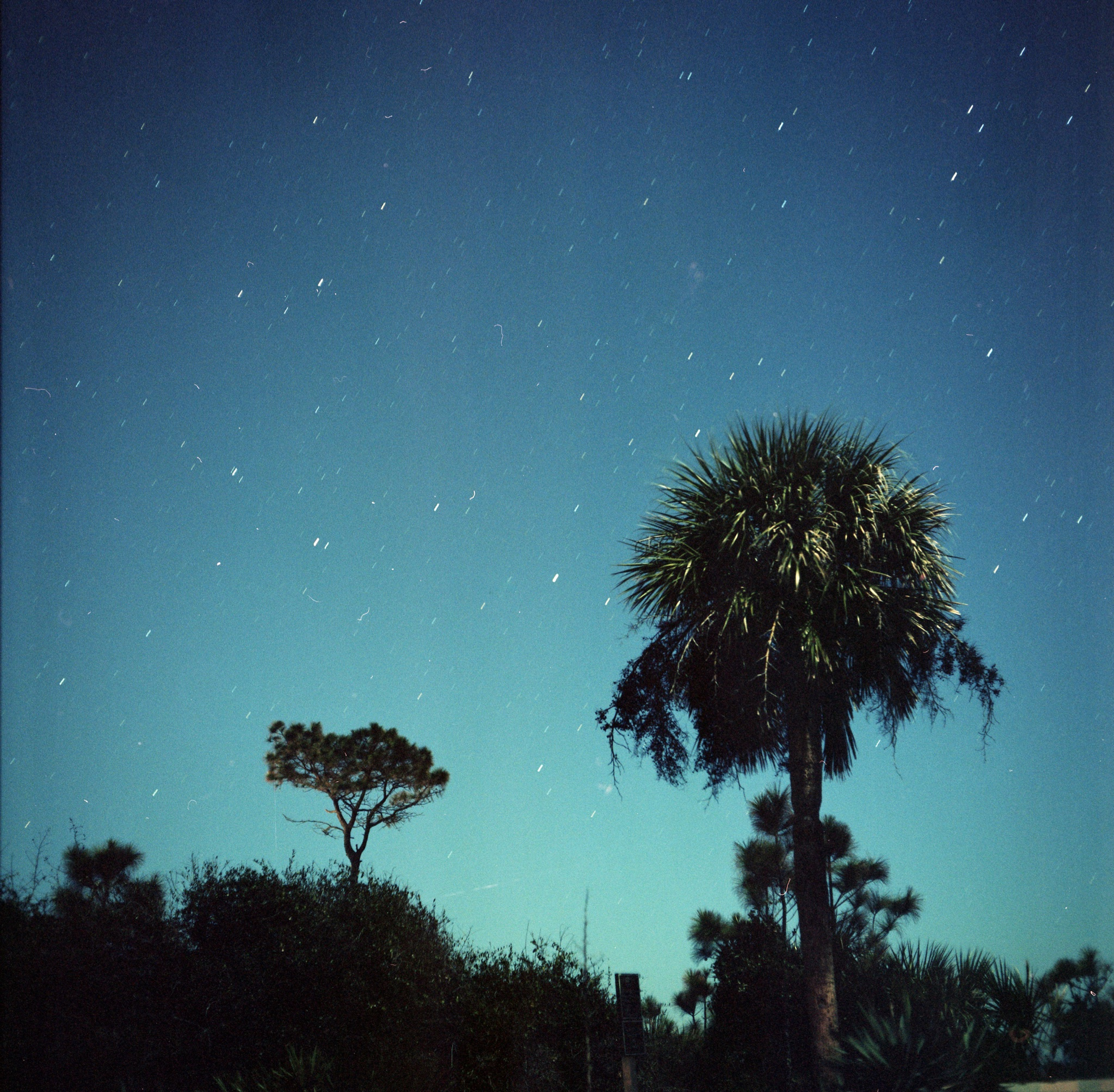 Shot on a medium format film camera, the motion of the stars in the winter night sky above Hilton Head Island in South Carolina begins to show during late December 2017.
