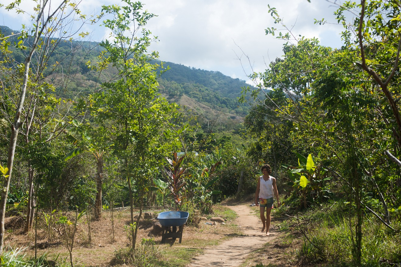 Agriculture interns at Kalu Yala, in Panama, work on this experimental farm. (Darby Hopper/Medill)