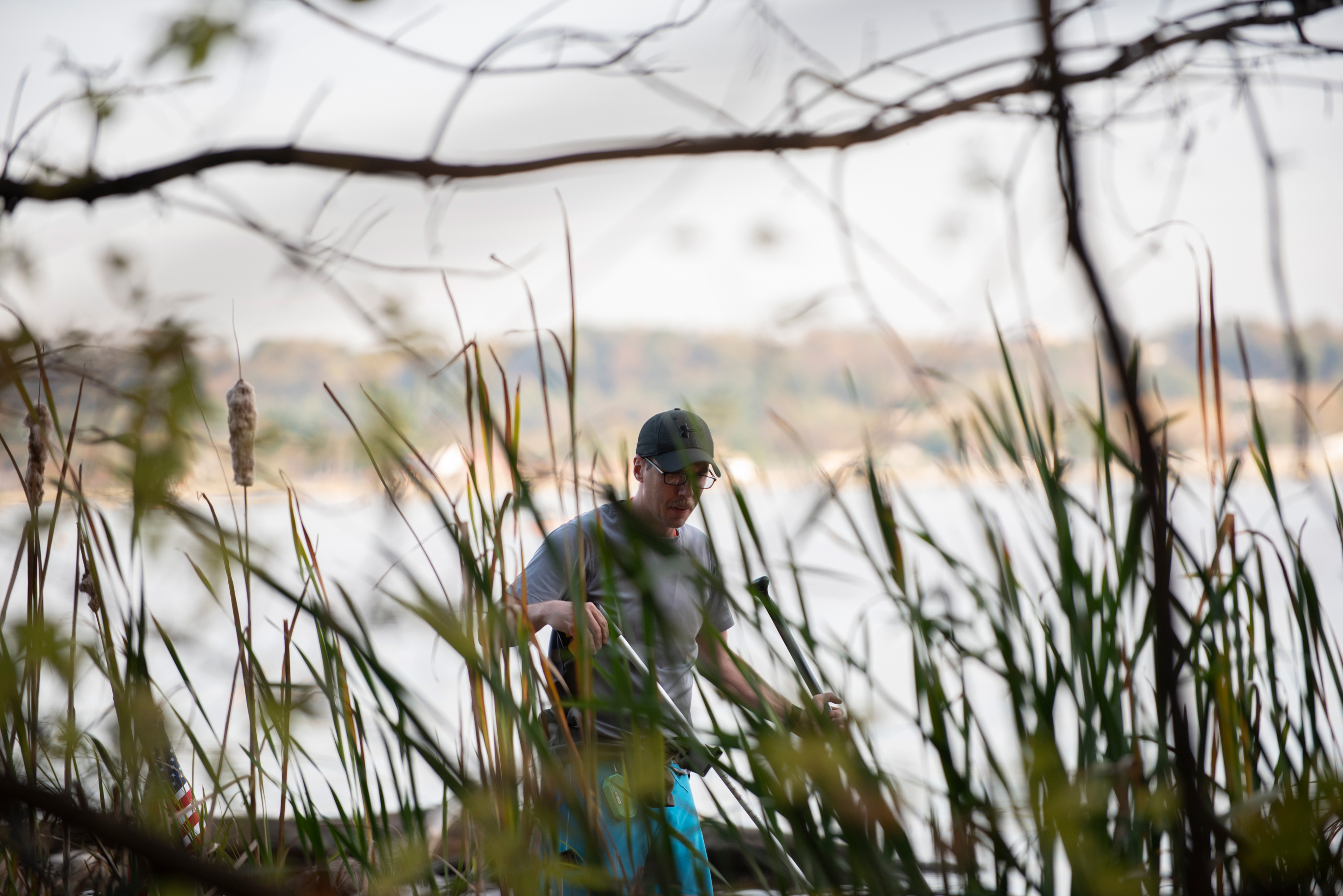 Joseph Wright is seen through cattails during a picking session on the Potomac River in Alexandria, VA on November 5, 2019.