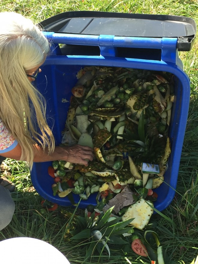 Carolyn Hoagland sorting through food waste to feed larvae. (Chris Hornsby, 2015)