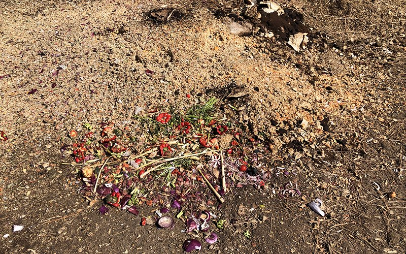 This is how a new pile of compost gets started on Northern Arizona University's campus, with raw food scraps and coffee grounds.