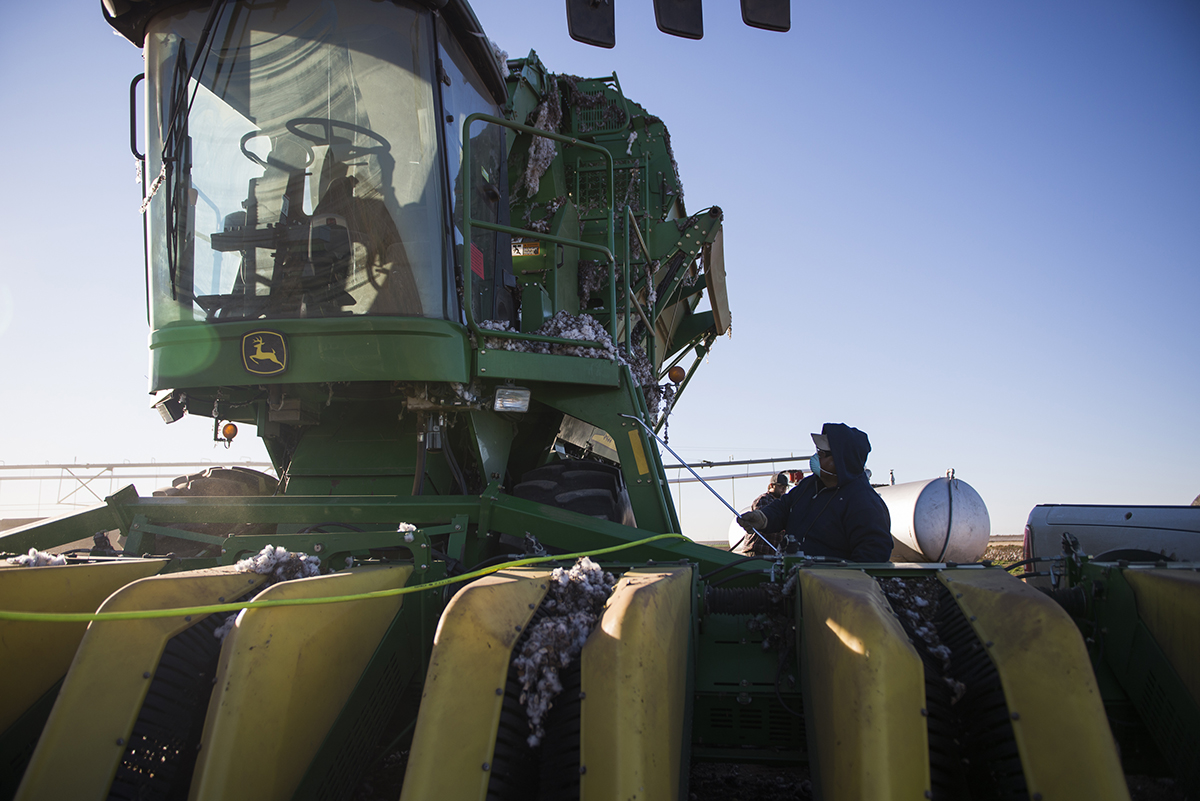 Each morning the equipment is cleaned and maintained while Ty and his crew wait for the humidity to drop enough for them to start pulling cotton.