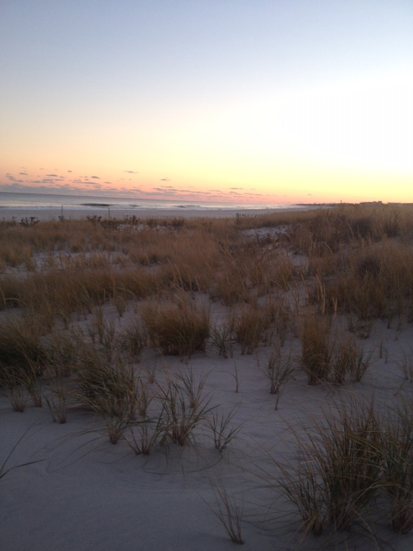 More of the dunes on Long Beach Island.