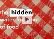 The Hidden Water Footprint of Food