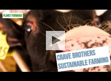 Sustainable Dairy Farming in Wisconsin