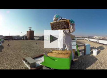 Roof to Table | 360° Video Experience