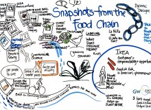 Dynamic Dialogue: Snapshots From The Food Chain