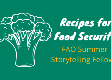 """Illustration of broccoli next to text that reads """"Recipes for Food Security FAO Summer Storytelling Fellows"""""""