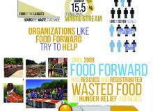 Fighting food waste with Food Forward