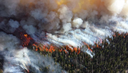 Wild fire and smoke eclipse an expanse of forest.