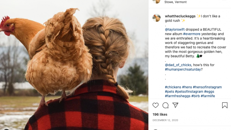 A photo of Cross with a brain in her hair and wearing a plaid coat, copying the Evermore cover. She has a chicken standing on her shoulder.