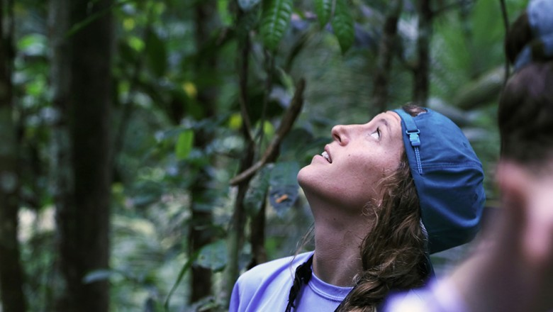 Emily Sesno looks up in the tree canopy at monkeys as they jump from branch to branch, following the same path of the one before it. (Planet Forward)