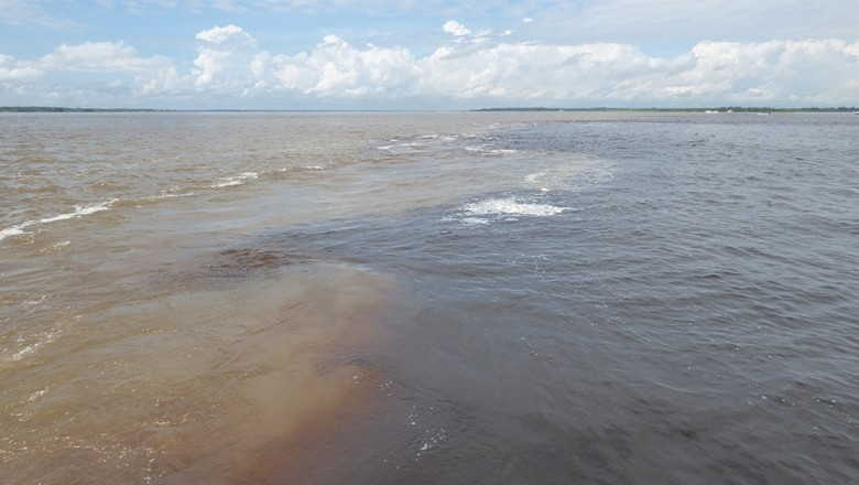 First stop on the trip was the meeting of the waters, where the muddy waters of the Amazon river meet the dark waters of the Rio Negro — but never mix. (Amit Ronen)