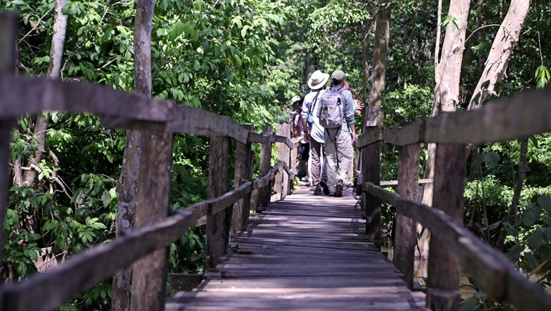 The walkway to see giant water lilies was narrow, precarious and occasionally full of people. But along the boardwalk, the flooded area was full of life, including fish, dragonflies, birds and monkeys. (Planet Forward)