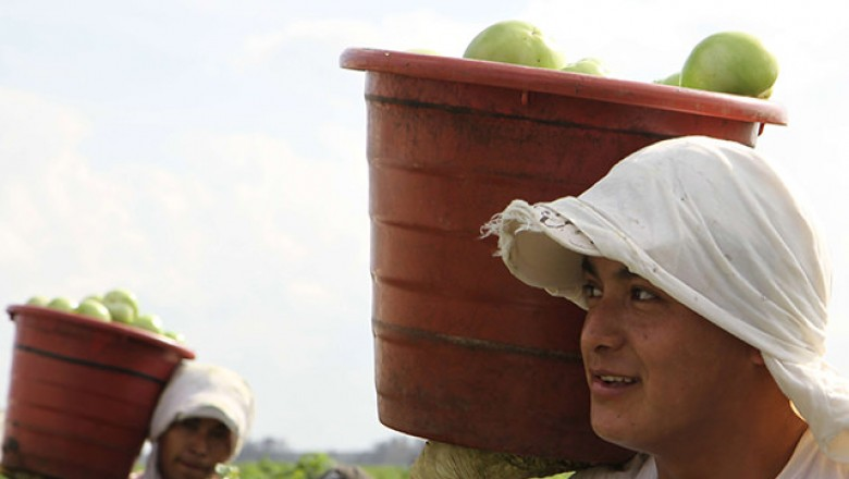 Immokalee worker holding a bucket