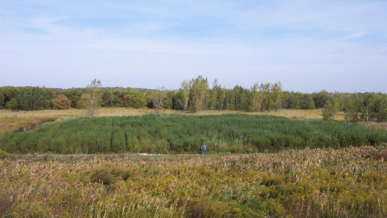 An early trial of the ongoing bioremediation of an old soda ash plant site in Solvay, N.Y.
