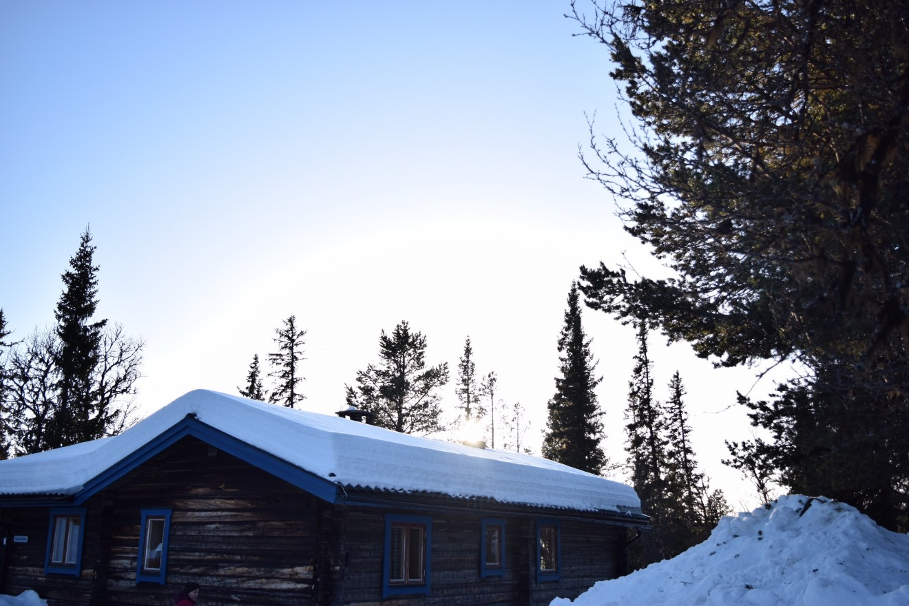 Pictured here is a cabin I stayed in while traveling in the north. It is clear how people here utilize the outdoors. It was difficult to find a spot alone on the ski slopes. There's a deep connection with Swedes and their love for the natural world that is so strong it's almost tangible.
