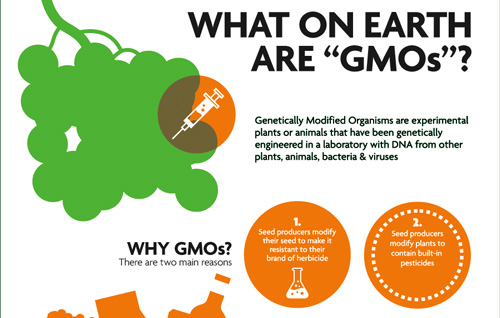 My GMO Journey: From Skeptic To Supporter | Planet Forward