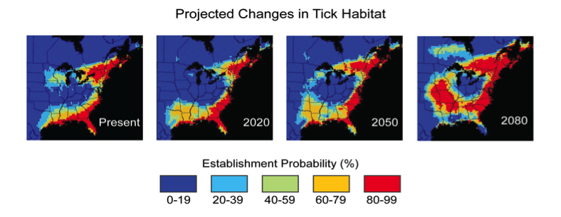 The Maps Show The Current And Projected Probability Of Establishment Of Tick Populations Ixodes Scapularis That Transmit Lyme Disease